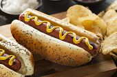 stock photo of wiener dog  - Gourmet Grilled All Beef Hots Dogs with Sides and Chips - JPG