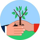foto of afforestation  - Flat illustration  - JPG