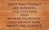Only two things are infinite, the universe and human stupidity, and I'm not sure about the former -
