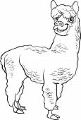 Alpaca Animal Cartoon Coloring Book