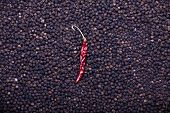 Black And Red Chili Pepper Background