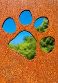Silhouette of a cat paw in rusty metal wall in front of trees