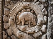 Mysterious Carving at Ta Prohm Temple, Angkor, Cambodia