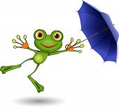 Frog With Umbrella
