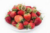 Strawberry Macro On Plate