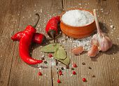 Red hot chili peppers , garlic , salt and other spices on old wooden background