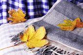 Autumn leaves on plaid close-up