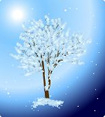 illustration with tree in snow on blue background