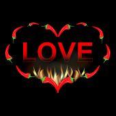 Valentine card red pepper in fire
