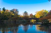 The Gapstow Bridge In Central Park, New York, New York, USA