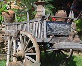 Bullock Cart.