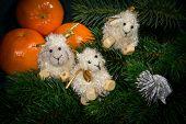 Christmas Composition. Symbol Of 2015 - Sheep.