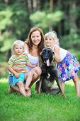 picture of puppies mother dog  - girl and her little brother playing with dog on grass - JPG