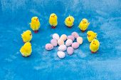 image of clutch  - A clutch of little baby yellow toy Easter chicks encircle a collection of mini chocolate Easter eggs - JPG