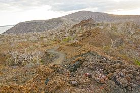 stock photo of scoria  - Spatter Cones and Volcanic Rock on Isabella Island in the Galapagos  - JPG