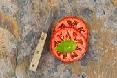 pic of basil leaves  - Top view of single large basil leaf on freshly sliced tomato with knife - JPG