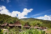 stock photo of papua new guinea  - A traditional village in Papua - JPG
