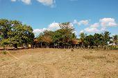 picture of hacienda  - Hacienda in Valle de los Ingenios near Trinidad Cuba  - JPG