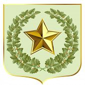 Vector green oak and a gold star on a escutcheon