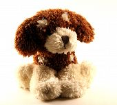A Toy - A Soft, Children'S Dog