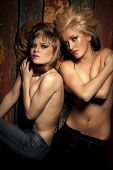 picture of nude women  - Nude portrait of two sexy girls posing on dark background - JPG