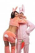 Embraces of  funny pink rabbits isolated on white background