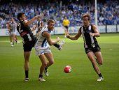 MELBOURNE - APRIL 2:  Collingwood's Alan Toovey (R) and North Melbourne' Lachlan Hansen (C) contest