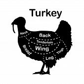 Meat Cuts - Turkey. Diagrams For Butcher Shop. Scheme Of Turkey. Animal Silhouette Turkey. Guide For poster