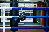 Boxing Gloves In A Boxing Ring With Bags In The Gym. poster