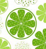 Kalk Scheiben Muster oder grün hintergrund & weiß