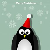stock photo of santa claus hat  - Vector xmas greeting card with penguin in hat - JPG