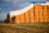 picture of tarp  - A young man secures a tarp over giant hay bails lit from the side by the late afternoon sun with a storm cloud moving in behind - JPG
