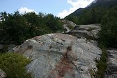picture of firn  - Summer in the mountains the summer season in the alpine zone - JPG