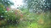 Rain Drops On Glass Rainy Day Window Glass With Rain Drops And Green Tree Nature Background poster