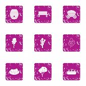 Private Park Icons Set. Grunge Set Of 9 Private Park Icons For Web Isolated On White Background poster