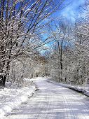 Winding Winter Road