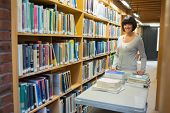 Librarian putting books back on shelf