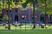 Harvard Yard Scene