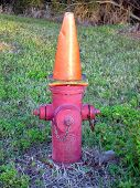 Dunce Fire Hydrant