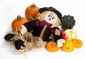 foto of cinderella  - Harvest scarecrow laying on a bed squash fairytale cinderella and Halloween pumpkins - JPG