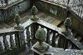 Sacred Lichens