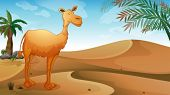 picture of sandstorms  - Illustration of a desert with a lonely camel - JPG