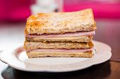 Toasted Sandwich With Ham And Cheese