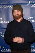 Zach Galifianakis  at the 2009 Oceana Annual Partners Award Gala, Private Residence, Los Angeles, CA