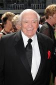 Ernest Borgnine at the 61st Annual Primetime Creative Arts Emmy Awards. Nokia Theatre, Los Angeles,