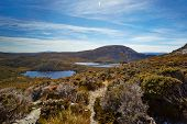 Alpine Tarns On The Overland Trail, Cradle Mountain, Tasmania