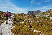 Hikers On Overland Trail, Cradle Mountain, Tasmania