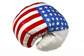 Stars and Stripes Boxing Fist