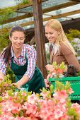 Gardener woman advising customer buying plants in greenhouse
