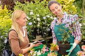 Garden centre woman worker selling potted plant to female customer